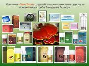 Малазийская компания продает препаратов из органической Ганодермы